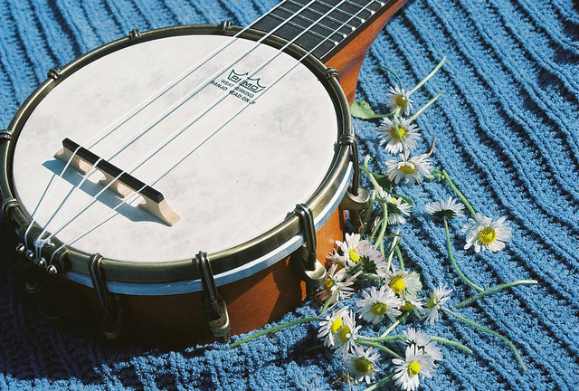Best Banjolele Buying Guide