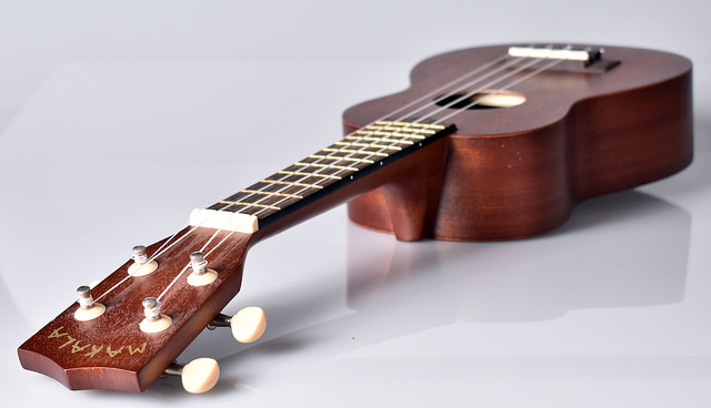 Top 10 Best Ukuleles For Beginners In 2019 Reviews & Buying Guide