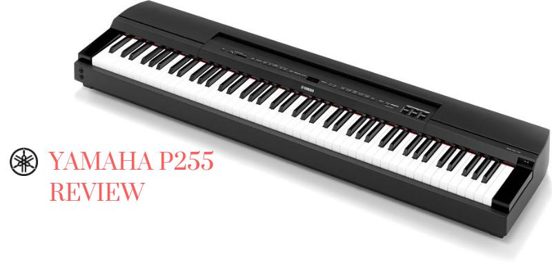 Yamaha P255 Review