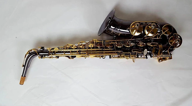 best Alto Saxophones review