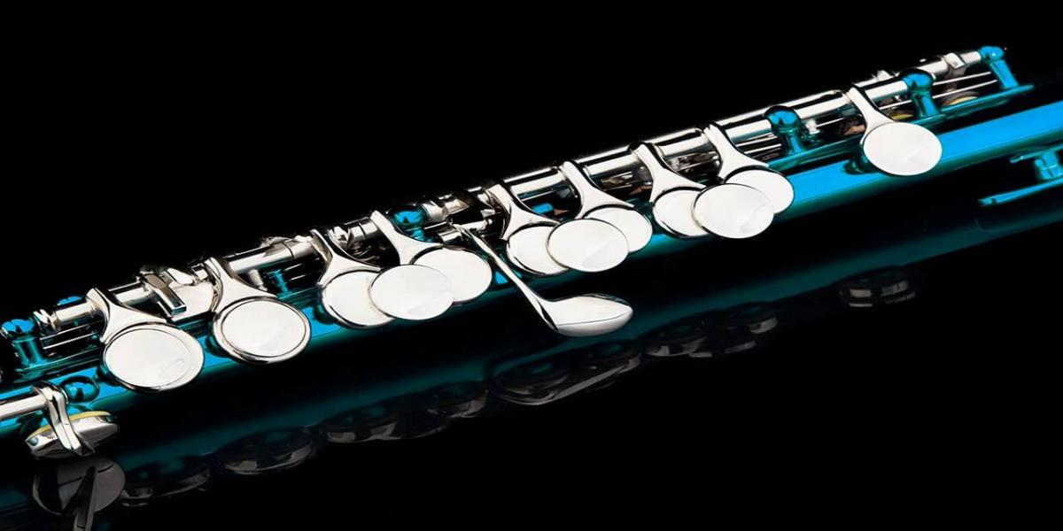 Top 10 Best Piccolo Reviews & Buying Guide In 2019