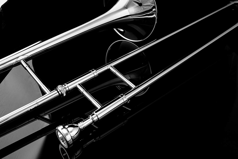 Top 10 Best Trombones On The Market 2019 Reviews