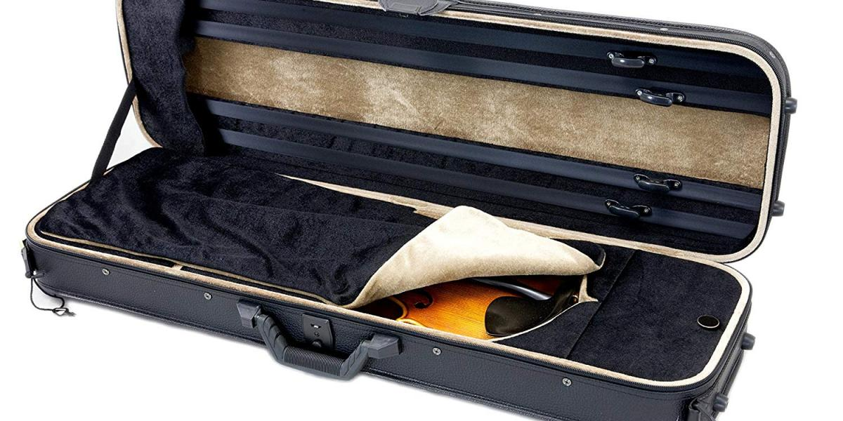 Top 10 Best Violin Cases On The Market 2019 Reviews