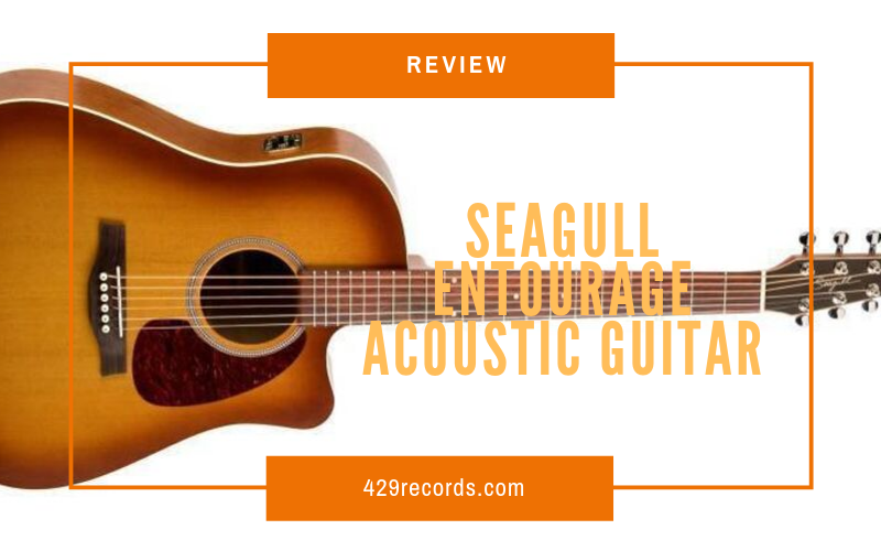 seagill review