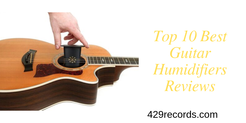 Guitar Humidifier Reviews